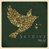 Play & Download Skydive, Vol. 13 by Various Artists | Napster