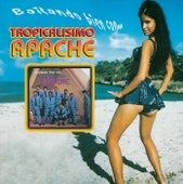 Play & Download Bailando Bien Con... by Tropicalisimo Apache | Napster