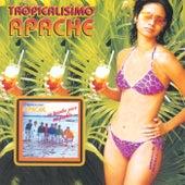 Un Brindis Para Mi Pueblo by Tropicalisimo Apache
