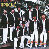 Regreso La Medallita by Tropicalisimo Apache