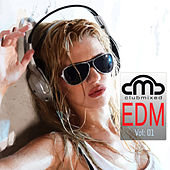 Clubmixed EDM, Vol. 1 by Various Artists