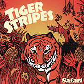 Safari by Tiger Stripes