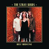 Best Medicine by Stray Birds