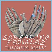 Wishing Well - Single by Screaming Females