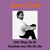 Little Things You Do by Sam Cooke