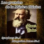 Play & Download Johannes Brahms, Los Grandes de la Música Clásica by Various Artists | Napster