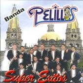 Play & Download Super Exitos by Banda Pelillos | Napster
