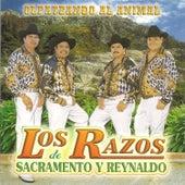 Olfateando el Animal by Los Razos