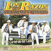 Play & Download Soy Malandrin by Los Razos | Napster