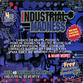 Industrial Madness by Various Artists
