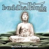 Freedom by Buddhattitude