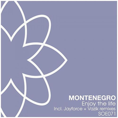 Play & Download Enjoy The Life by Monte Negro | Napster