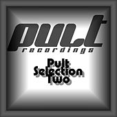 Pult Selection Two by Various Artists