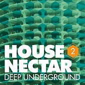 Underground House Nectar, Vol. 2 by Various Artists