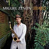 Play & Download Jíbaro by Miguel Zenón | Napster