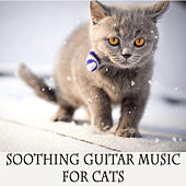 Play & Download Soothing Guitar Music for Cats by The O'Neill Brothers Group | Napster