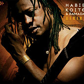 Play & Download Afriki by Habib Koite & Bamada | Napster