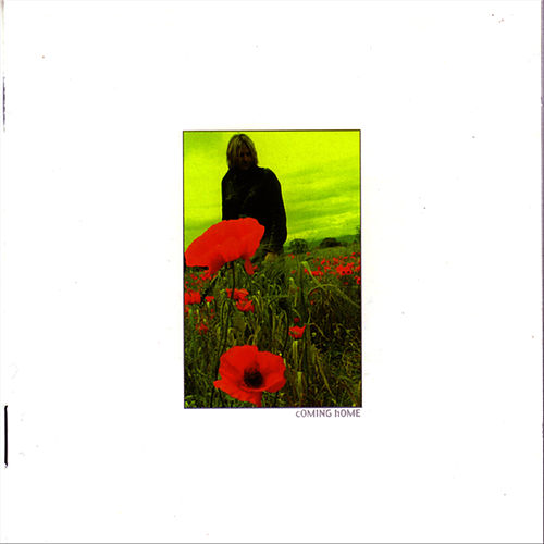Play & Download In The Poppyfields # 5 Coming Home by The Alarm | Napster