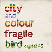 Play & Download Fragile Bird by City And Colour | Napster