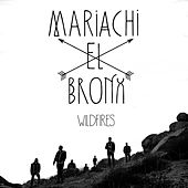Play & Download Wildfires by Mariachi El Bronx | Napster