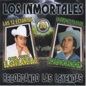 Play & Download Los Inmortales 20 Exitos de Colecion by Various Artists | Napster