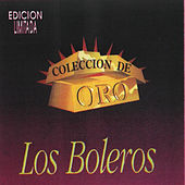 Play & Download Coleccion de Oro los Boleros by Various Artists | Napster