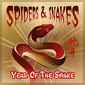 Year of the Snake by Spiders & Snakes
