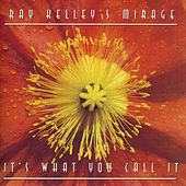 Play & Download It's What You Call It by Ray Kelley Band | Napster