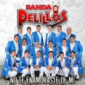 Play & Download No Te Enamoraste De MI by Banda Pelillos | Napster