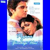 Pyar Zindagi Hai (Original Motion Picture Soundtrack) by Various Artists