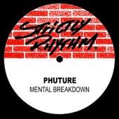 Mental Breakdown by Phuture