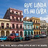 Play & Download Que Linda Es Mi Cuba - Son, Salsa, Musica Latina Exitos de Hoy y de Siempre by Various Artists | Napster