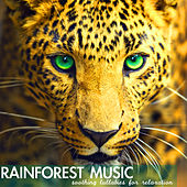 Play & Download Rainforest Music - Soothing Lullabies for Relaxation, Relaxing Sounds of Nature Background by Rainforest Music Lullabies Ensemble | Napster