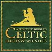 Play & Download A Beginners Guide To Celtic Flutes and Whistles by Various Artists | Napster