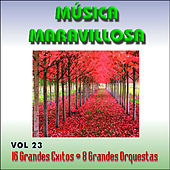 Play & Download Música Maravillosa Vol. 23 16 Grandes Exitos 8 Grandes Orquestas by Various Artists | Napster