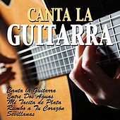 Play & Download Canta la Guitarra by Various Artists | Napster