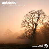 Play & Download Quietude by Christopher Lloyd Clarke | Napster