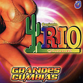 Play & Download Grandes Cumbias by Conjunto Rio Grande | Napster