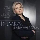 Dumka by Lada Valešová