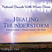 Healing Thunderstorm: Natural Sounds with Music Series by Llewellyn