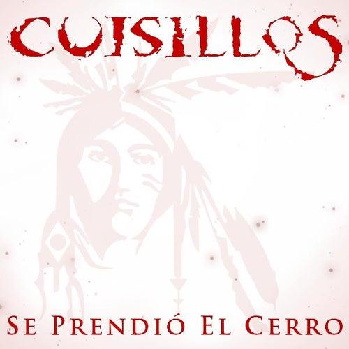 cerro latin singles Reviews on latin club in chula vista, ca - latin dance sd, la luz ultra lounge , sevilla nightclub, the spot bar, diamond jim's, onyx room, latin tuesdays.