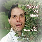 I Am A Wonderful Man by Michael Ian Black