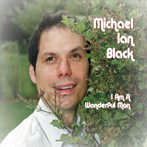 I Am A Wonderful Man by Michael Ian Black