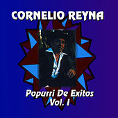 Play & Download Popurri De Exitos-vol. I by Cornelio Reyna | Napster