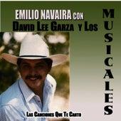 Las Canciones Que Te Canto by David Lee Garza