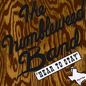 Play & Download Here To Stay by The Tumbleweed Band | Napster