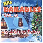 Hits Bailables, Vol. 20 by Various Artists