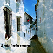 Play & Download Andalucia Canta by Various Artists | Napster