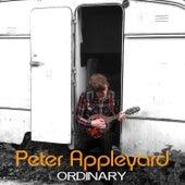 Ordinary by Peter Appleyard