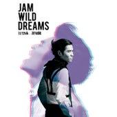 Jam Wild Dreams by Jam Hsiao